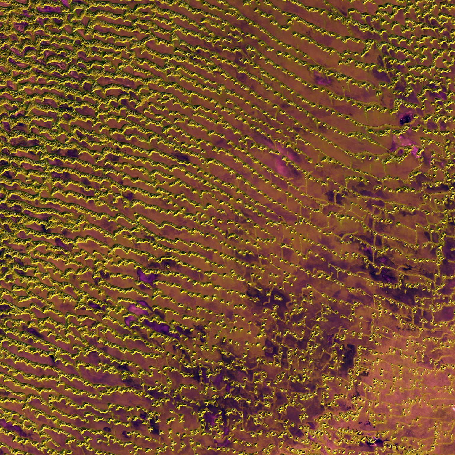 Rolling sand dunes in the expansive Rub' al Khali desert on the southern Arabian Peninsula are pictured in this image from the Sentinel-2A satellite. ESA picture